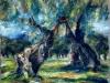 Ulivi del Salento - olio su tela 50x60 - 1998