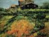Campagna - olio su tela 50x60 - 2001