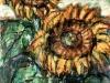 Girasoli - t.m. su cartoncino - 35x25